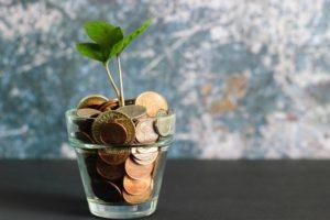 Plant met geld